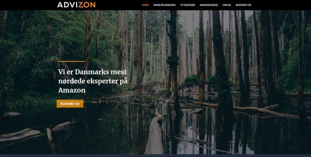 advizon hjemmeside designet af Damsgaardhjemmesider